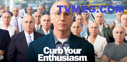 Curb Your Enthusiasm Banner #1