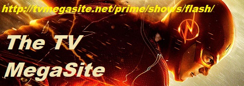The Flash Banner 1
