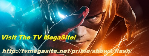 The Flash Banner 2