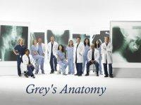 Grey's Anatomy Wallpaper Cast #1
